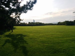 DonauPark where Monday night football can live on